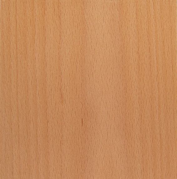 Custom Furniture Veneer Sample 04 - Steamed European Beech